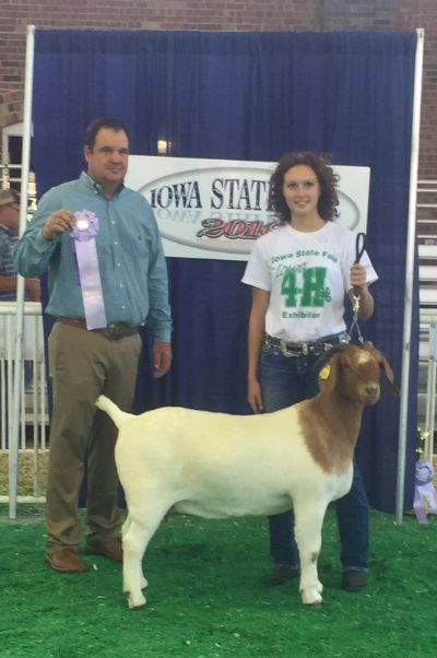 Bear Creek BC D824 Melissa.  Rsv. Senior Champion Doe.  Congrats to Sydney Black in Iowa!!